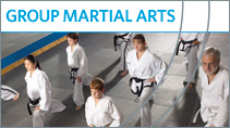 Group Martial Arts Classes